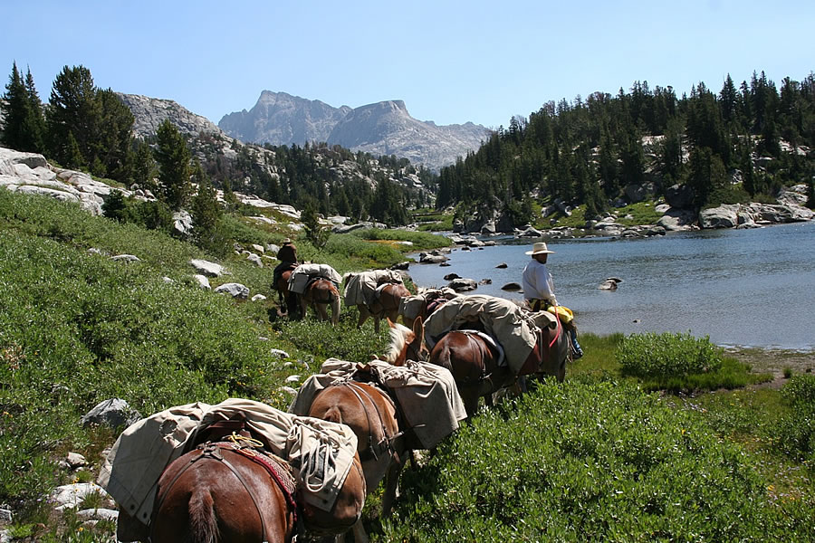 Wyoming Spot Packs, Pack Trips, Gear Drops, Backpacking Trips